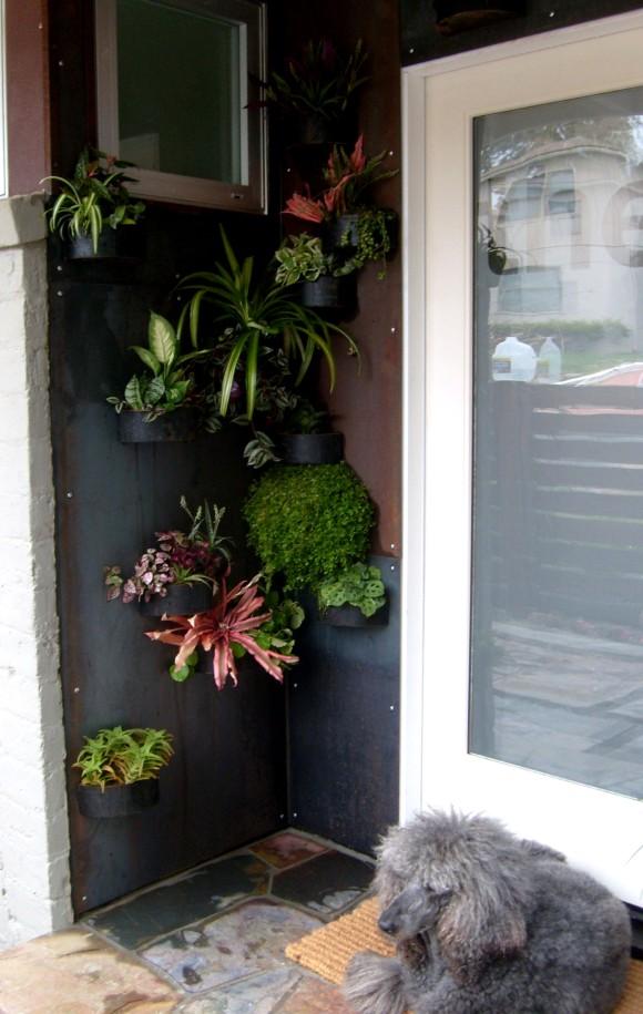 Keenan Hartsten Plant Installation