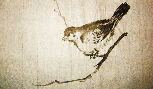 Elena Rosillo - Pájaro
